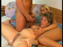Schwangere Frauen Bumsen